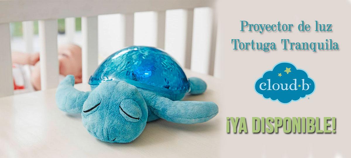 tortugas tranquilas